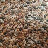 Mini Pebbles - Suitable for 1, 1.5 and 2 inch collars