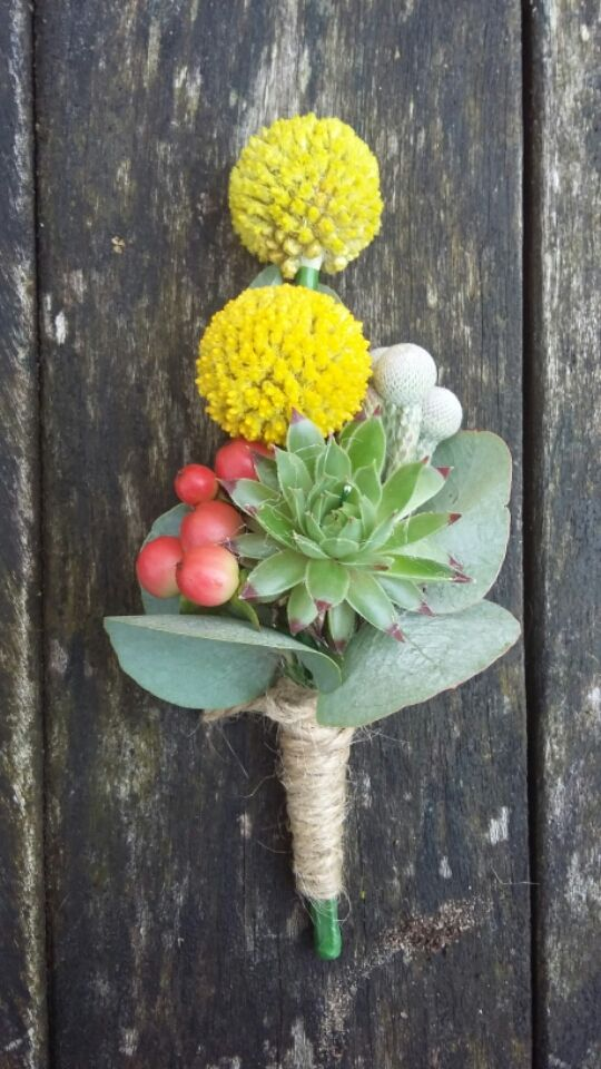 Unusual buttonhole succulent