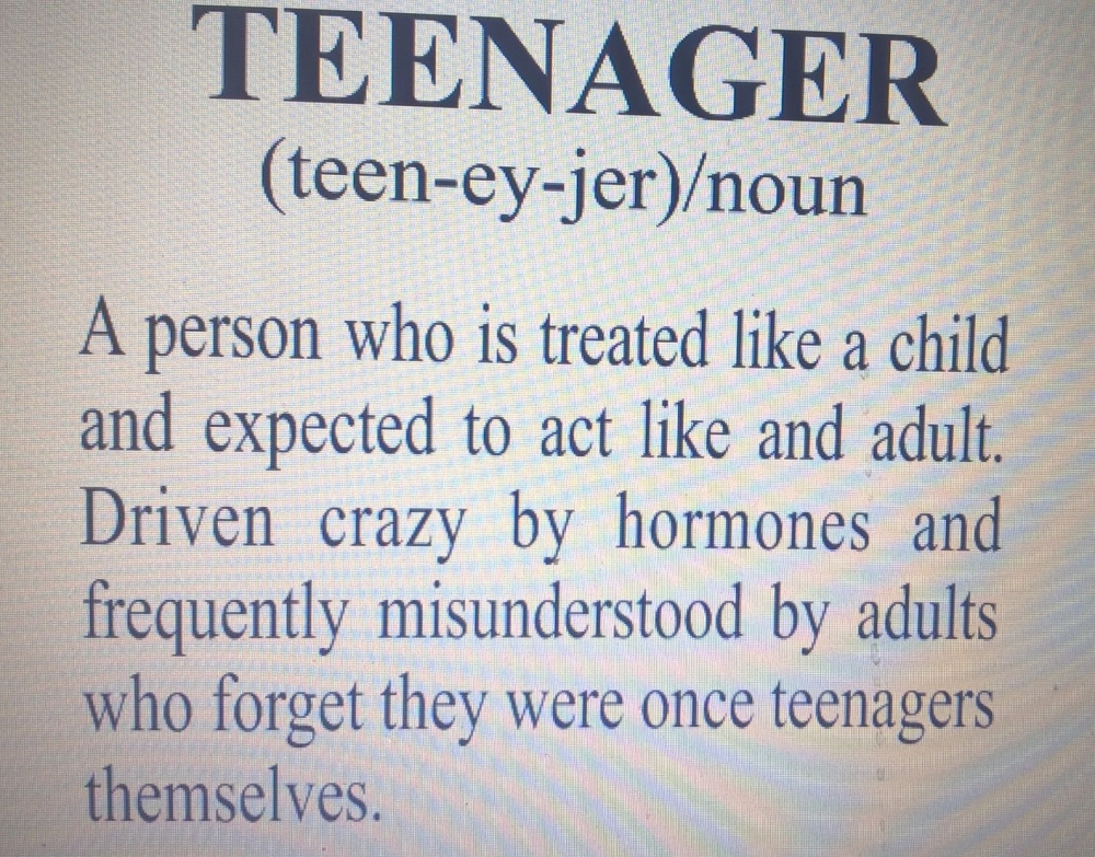 Teenager Definition Mug