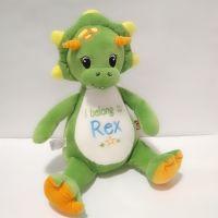 Personalised Cubbies Dinosaur