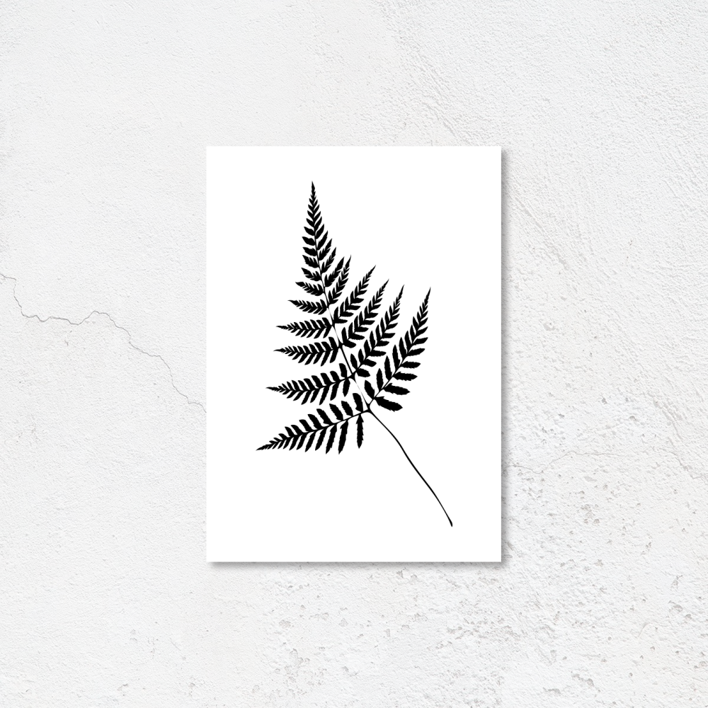 Black Fern Leaf print