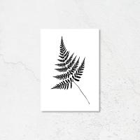 Black Fern Leaf print