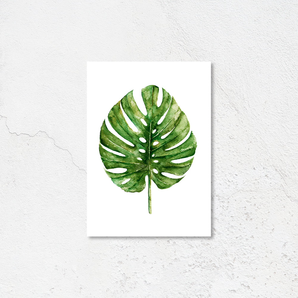 Monsterra Watercolour leaf Print