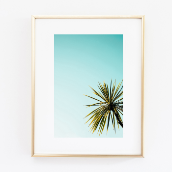 Coconut Palm Tree print