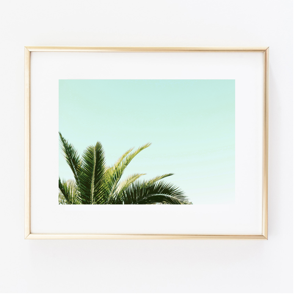 Coconut Leaf print