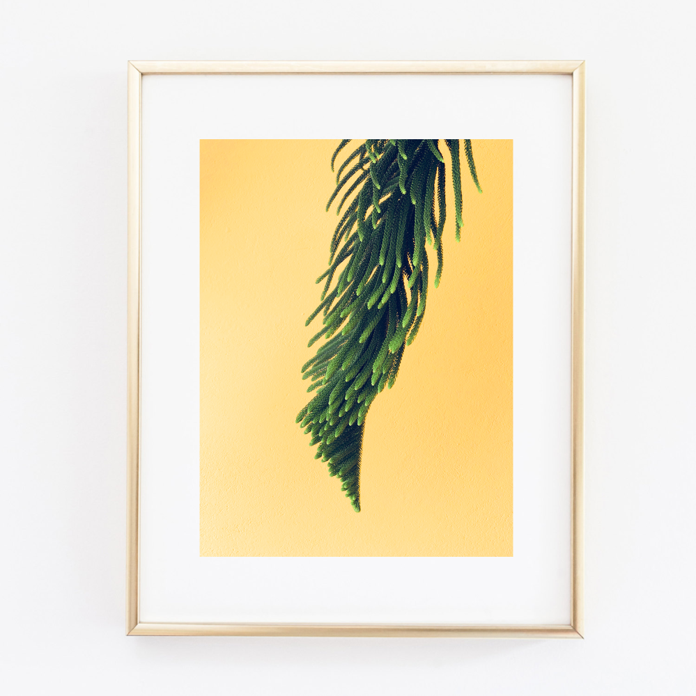 Green Foliage print