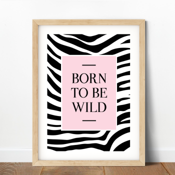 Zebra Stripes - Born to be Wild