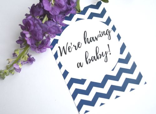 Pregnancy Milestone Cards - Navy and White Chevron Print