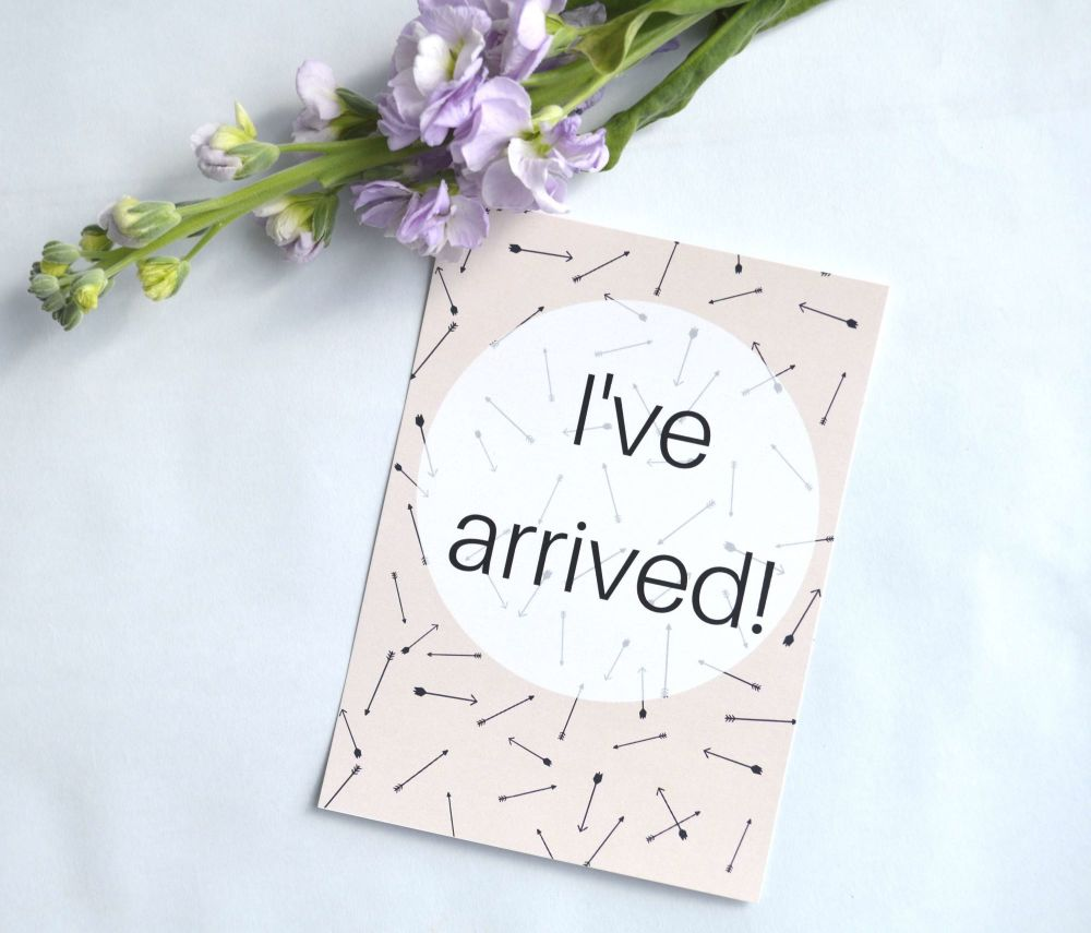 Funny Milestone Cards - Pink Arrow Print
