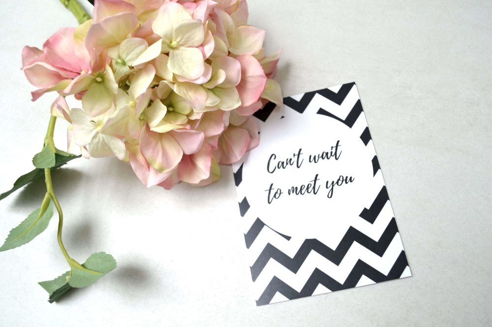 Pregnancy Milestone Cards - Black and White Chevron Print