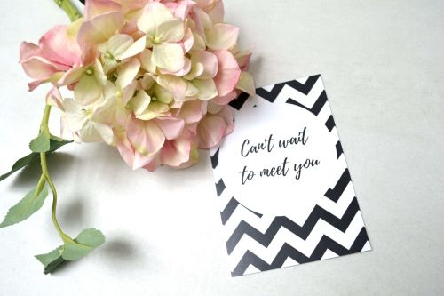 Pregnancy Milestone Cards - Black and White Chevron Print
