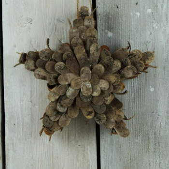 The Satchville Gift Company Birch Bark Star - 30cm