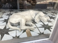 Grey Stone Effect Laying Dog