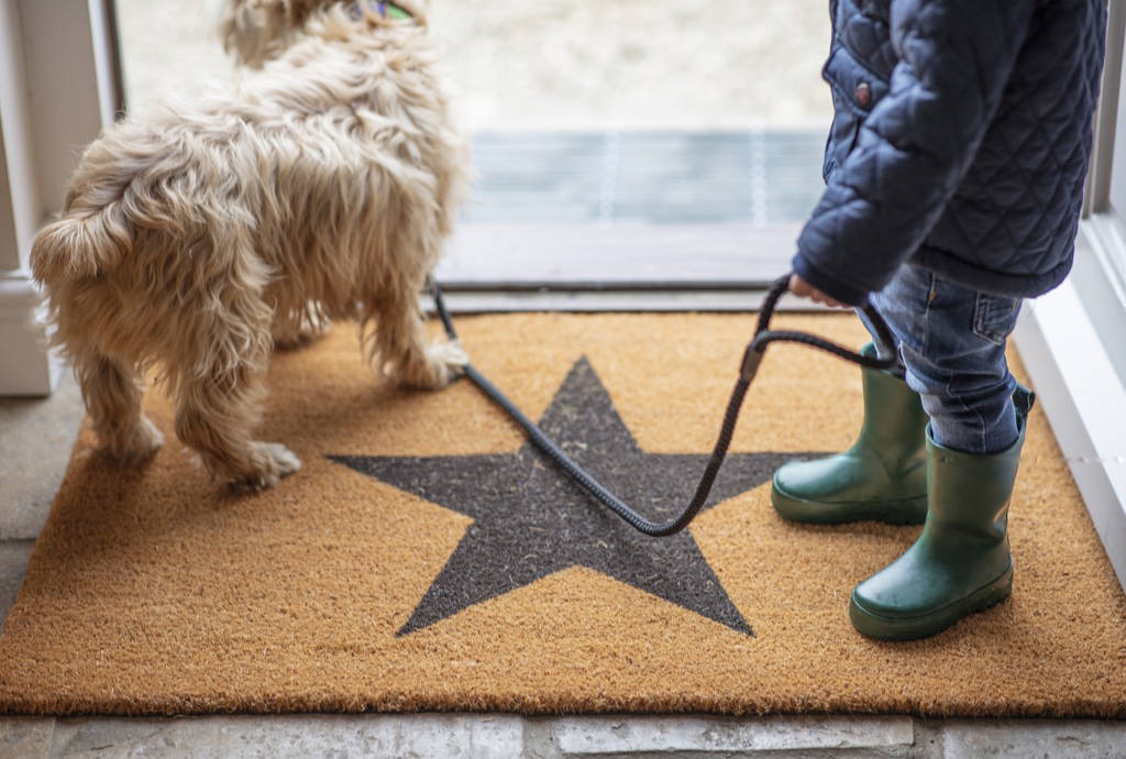 original_star-doormat-large.jpg