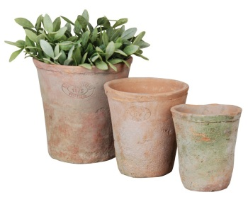 Set of 3 Aged Terracotta Pots and Saucers