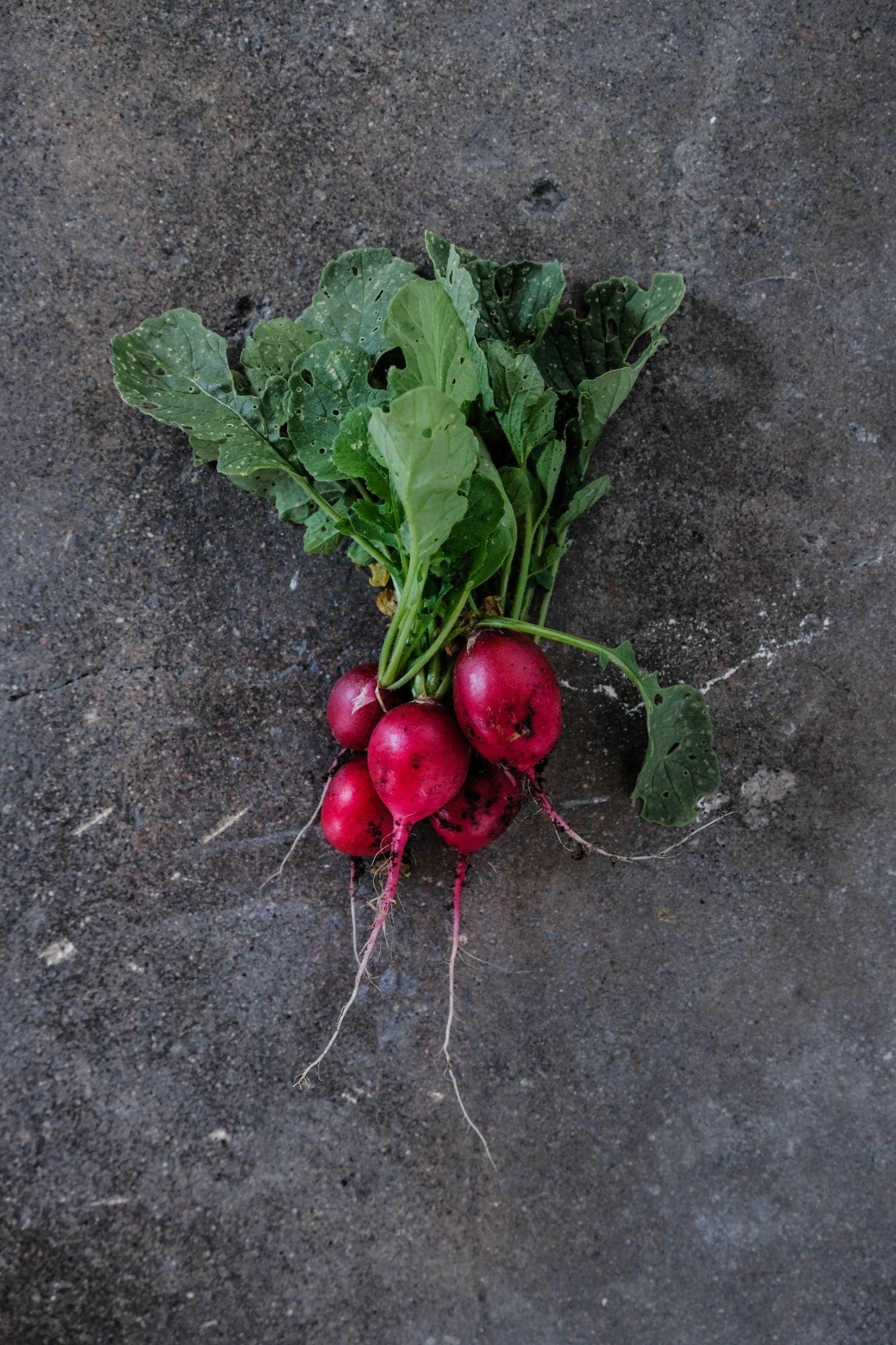 Leeks March Seasonal Vegetables