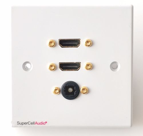 HDMI Toslink wall plate