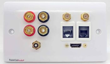 Wall plate with conections for 1 HDMi,  4 binding posts, 2 coax, 1 RCA, 1 Network and 1 Telephone.