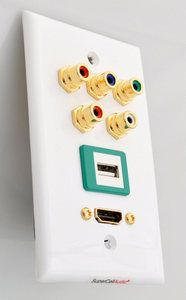Component HDMI USB wall plate