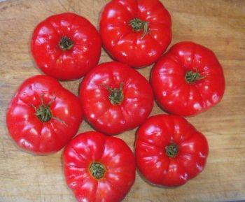 Tomato - Scoresby Dwarf