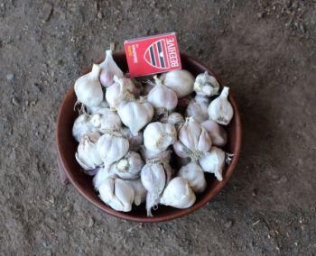Garlic - Henry's Soft Top Eating Grade 500g