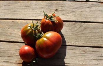 Tomato - Black Pear