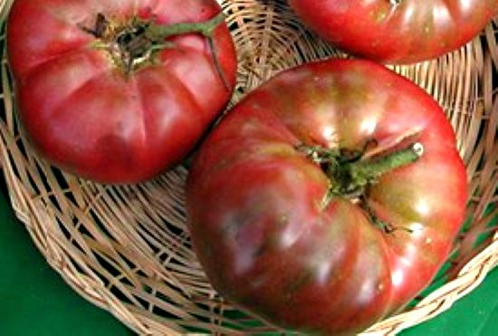 Tomato - Black from Tula