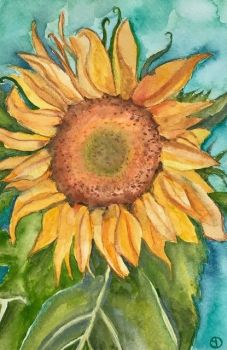 Seed Art Gift Card - Sunflower Card