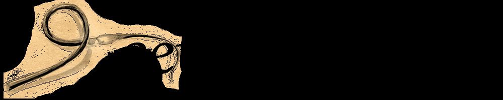 Setha's Seeds        , site logo.