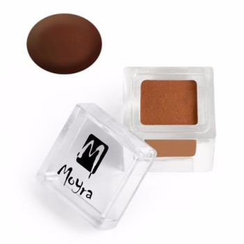 Coloured Acrylic Matte collection 019 Brown 3.5g