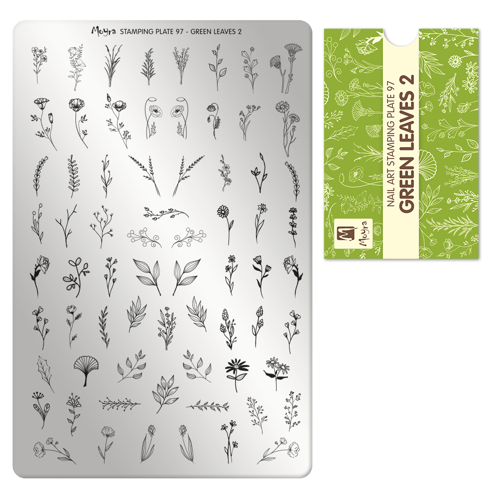 Stamping Plate 97 Green leaves 2