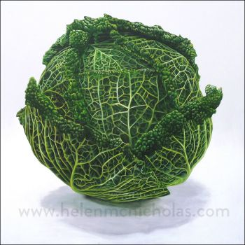 'The Cabbage' - Original Painting