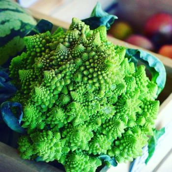 Broccoli/Cauliflower 'Romanesco' Seeds