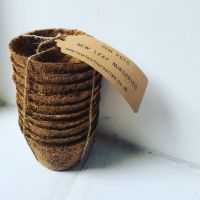 8cm Coir Pots