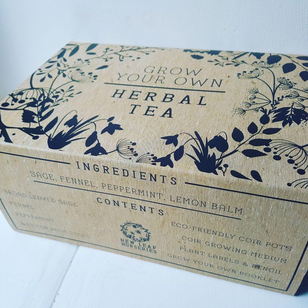 Grow Your Own Herbal Tea Kit