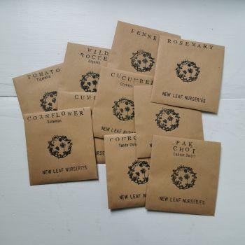 Random Seed Bundle - Pack of 10