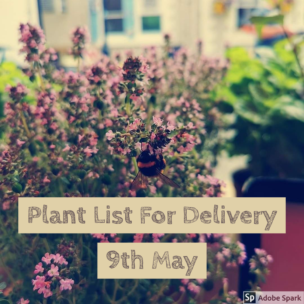 Plant List for Delivery 9th May