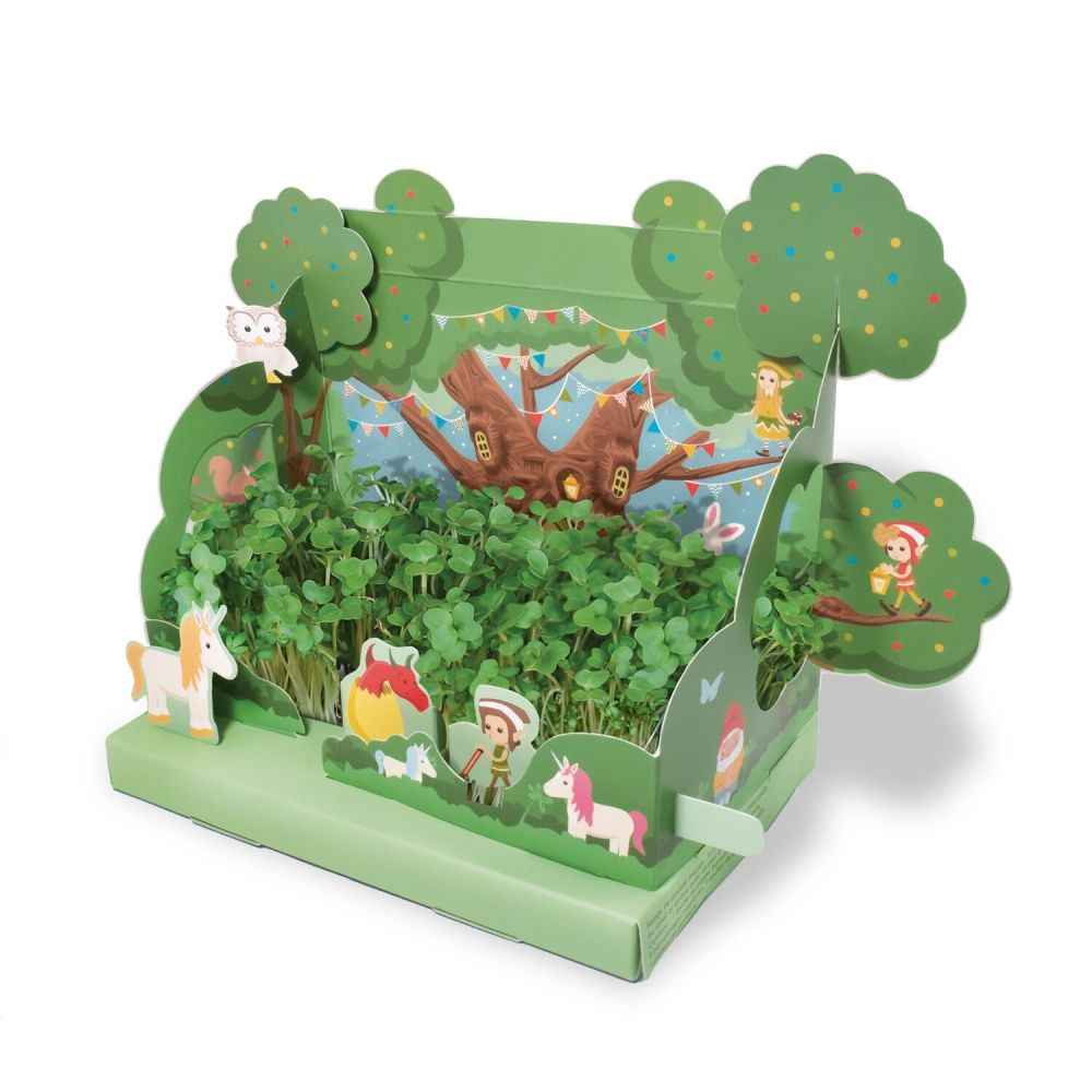 Grow Your Own Mini Magical Garden