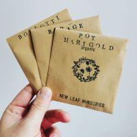Random Seed Bundle - Pack of 3