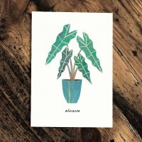 Botanics Card - Alocasia by Paperwhale