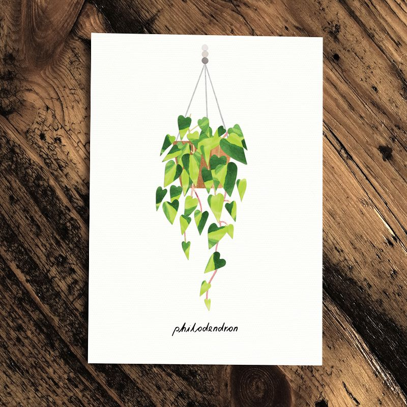 Botanics Card - Monstera by Paperwhale