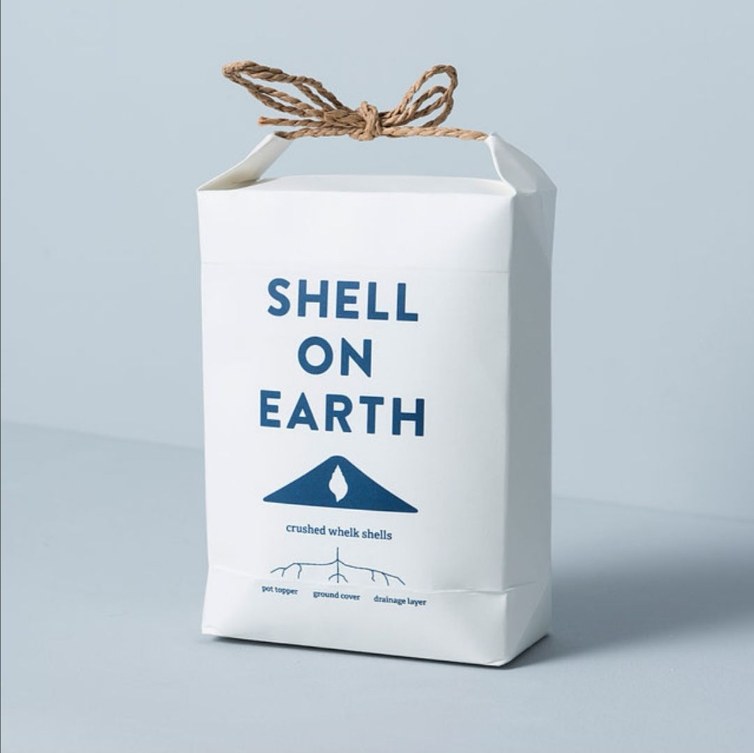 Crushed Whelk Shells by Shell on Earth