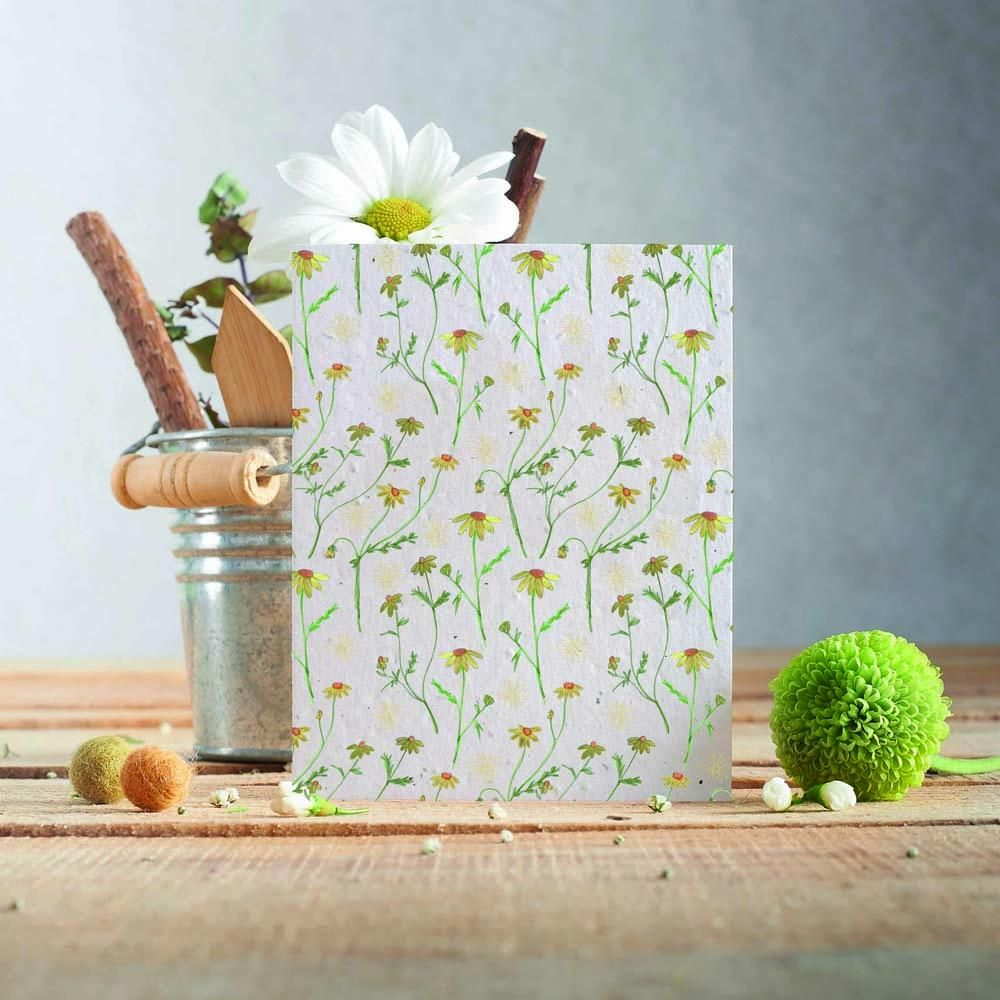 Chamomile Flowers Card by Hannah Marchant