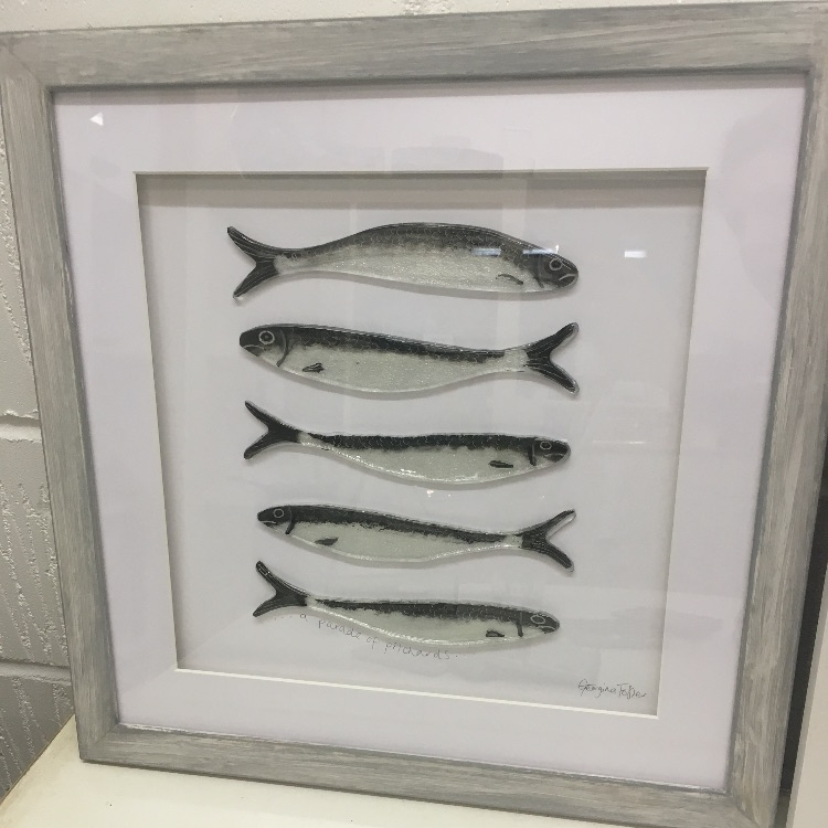 Large Cornish Fish Series Pilchard Frames