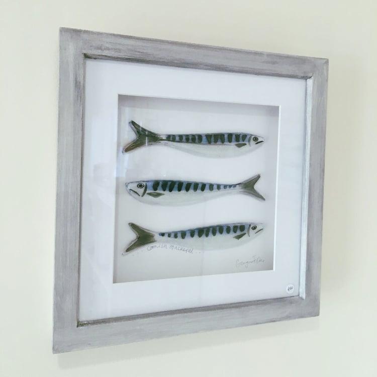Medium Cornish Fish Series Mackerel Frames