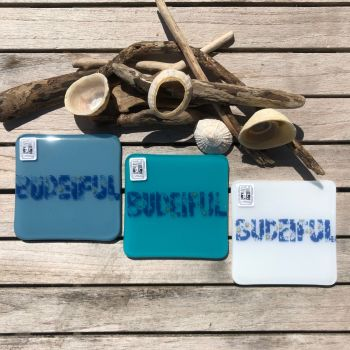 """Budeiful"" Coasters"
