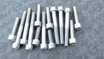 Stainless Steel Engine Bolt kit BMW F 800 from 2008 onwards