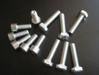 Stainless Steel Engine Bolt Kit for Kawasaki Versys KLE 650, 2007 onwards