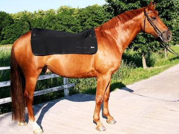 Back on Track® Equine Back Warmer, Standard