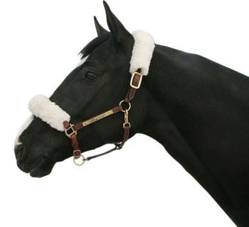Back on Track® Equine Halter Cover